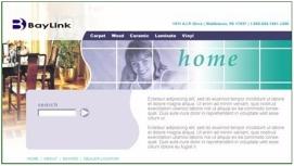 Baylink Website