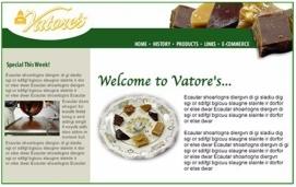 Vatores Website